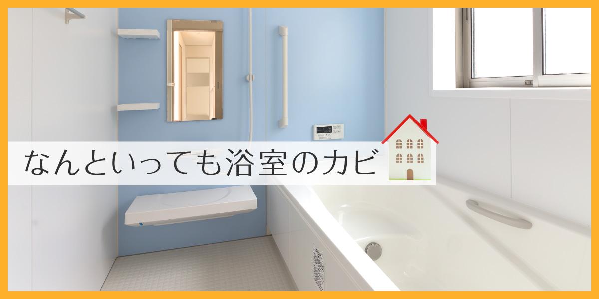 大掃除と言えばお風呂なんといっても浴室のカビ
